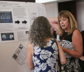 Lunch Poster Sessions