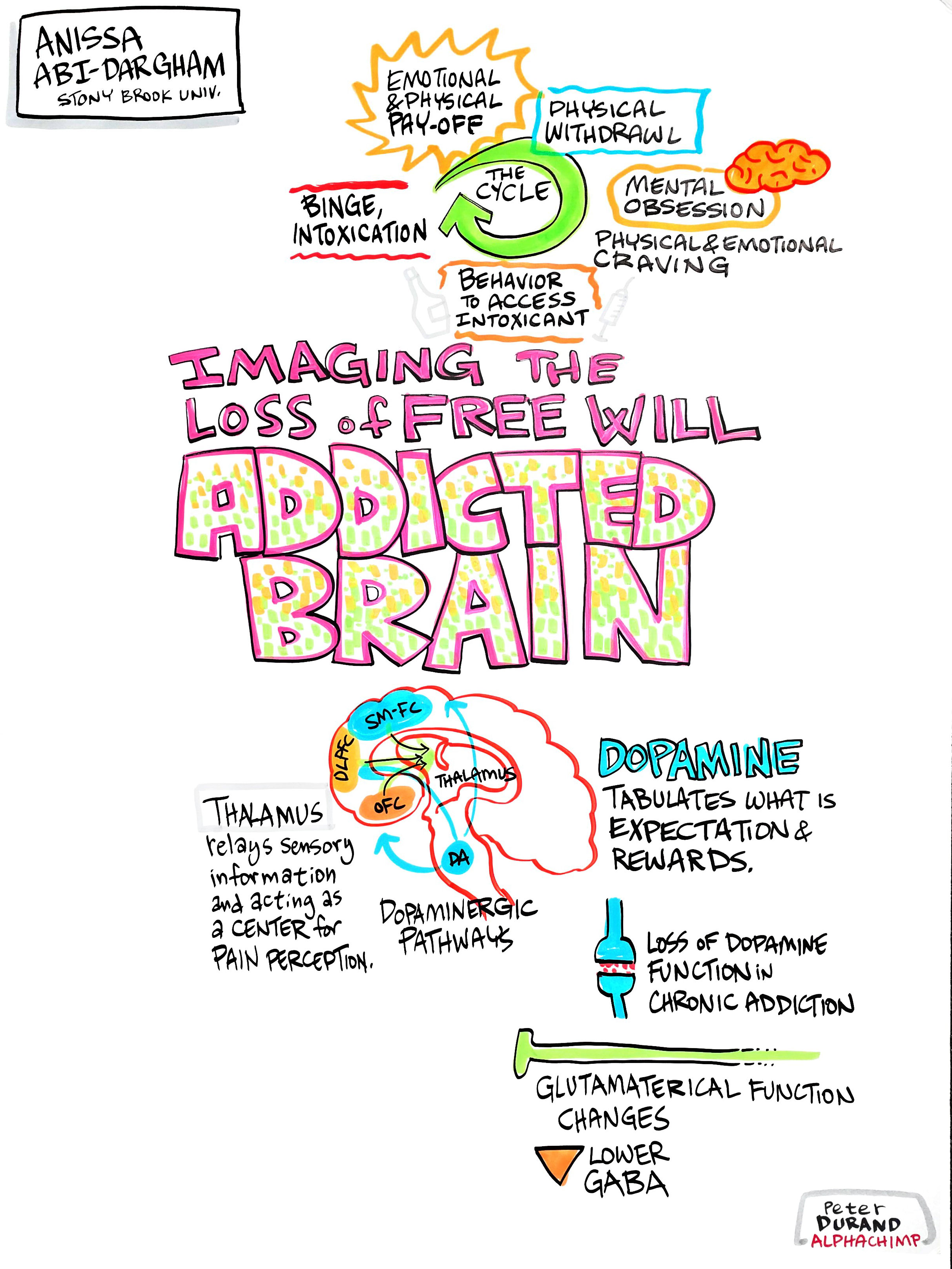 Imaging the Loss of Free Will in the Addicted Brain